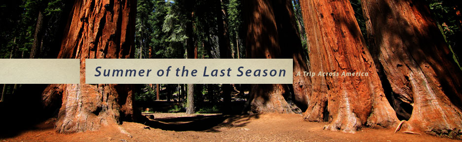 Summer of the Last Season